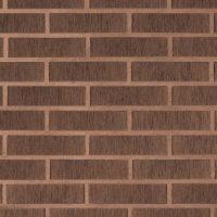 Pilnavidurės apdailos plytos LODE | ASAIS BRUNIS, 250x120x65