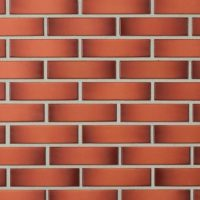 Pilnavidurės apdailos plytos LODE | GEMINI, 250x120x65