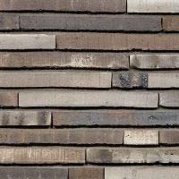 TERCA fasadinės plytos | Famosa WS LF